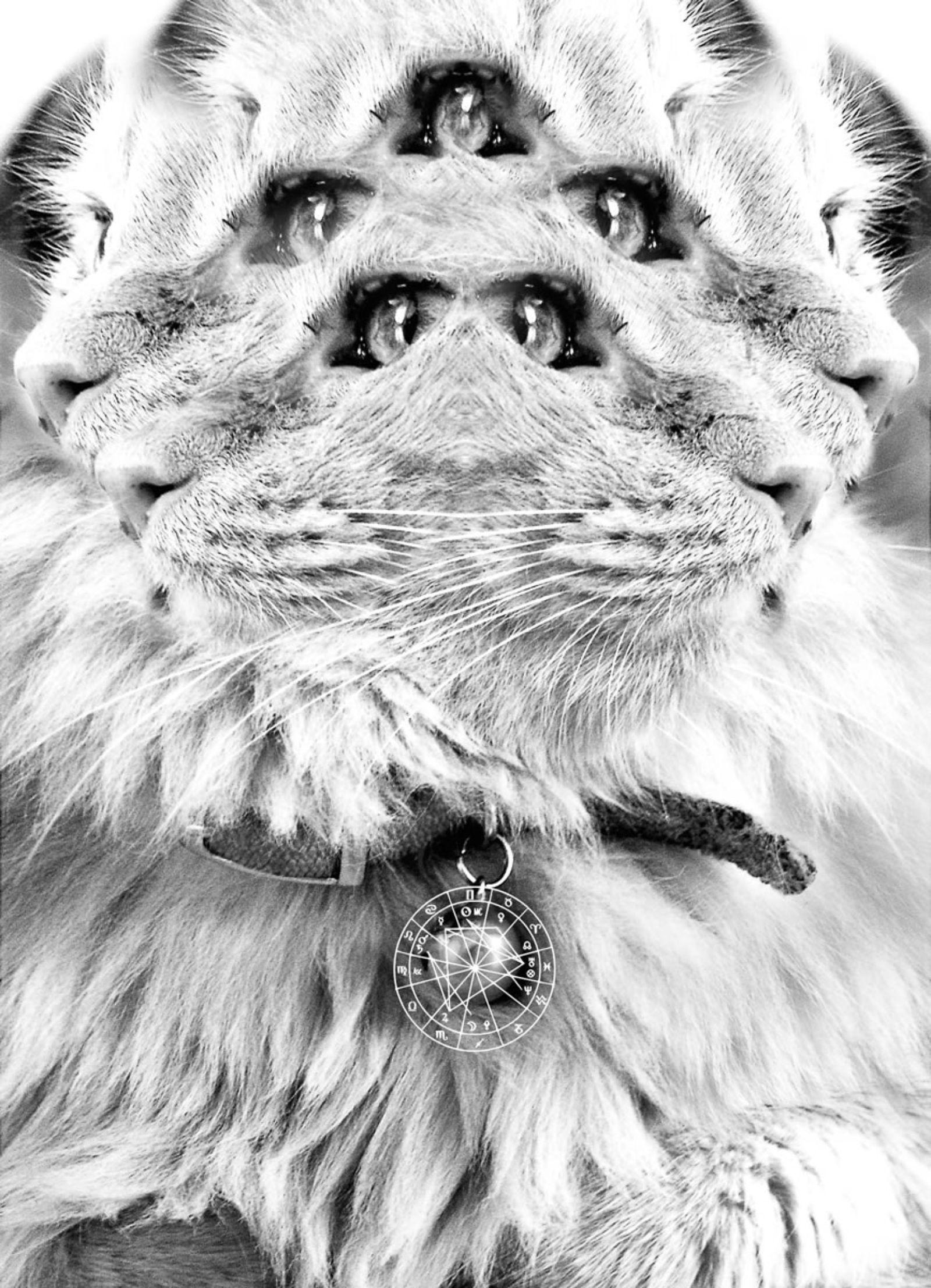 leo montes, leomontes, FL ATELIER #13